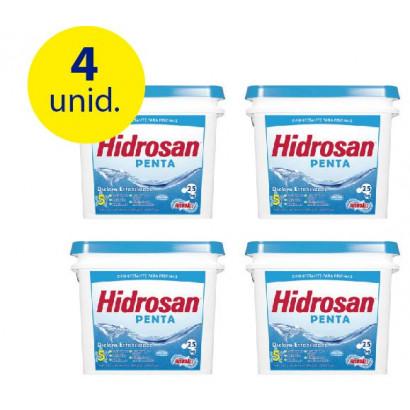 4 unidades Cloro Granulado Hidrosan Penta 2,5 kg - Hidroall